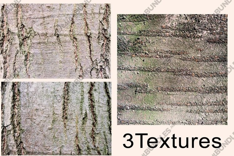 tree bark texture set. Wood texture. Background. example image 1