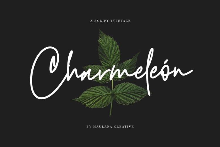 Charmeleon Script Typeface example image 1