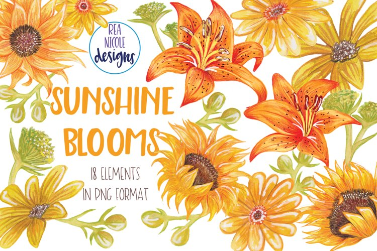Summer Sunshine Blooms clipart example image 1
