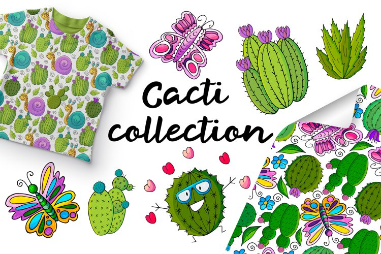 Cacti collection example image 1