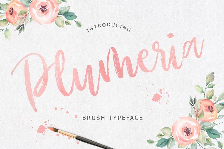 Plumeria Brush Script Font example image 1