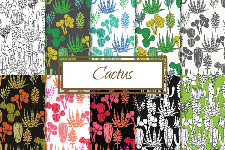 Cactus and Agave Patterns example image 1