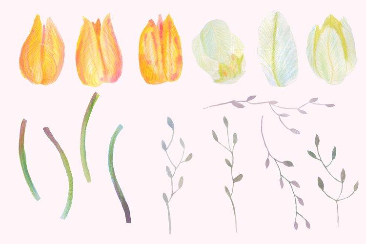 Floral Design Pack (watercolor & pastel) - Free Design of The Week Design7