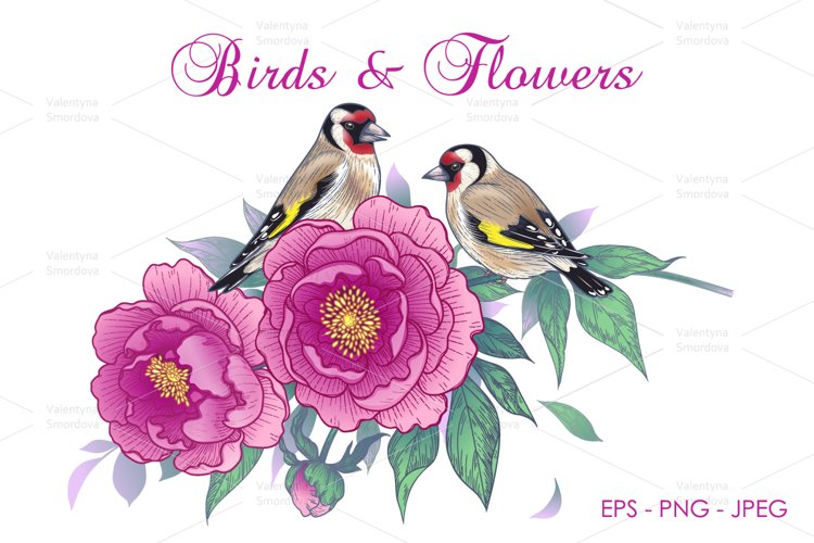 Hand Drawn Goldfinches Sitting on Pink Peony Branch