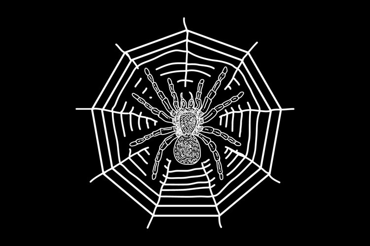 spider and web line art