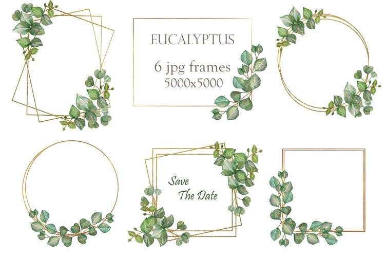 Watercolor 6 eucalyptus branches and golden frames set