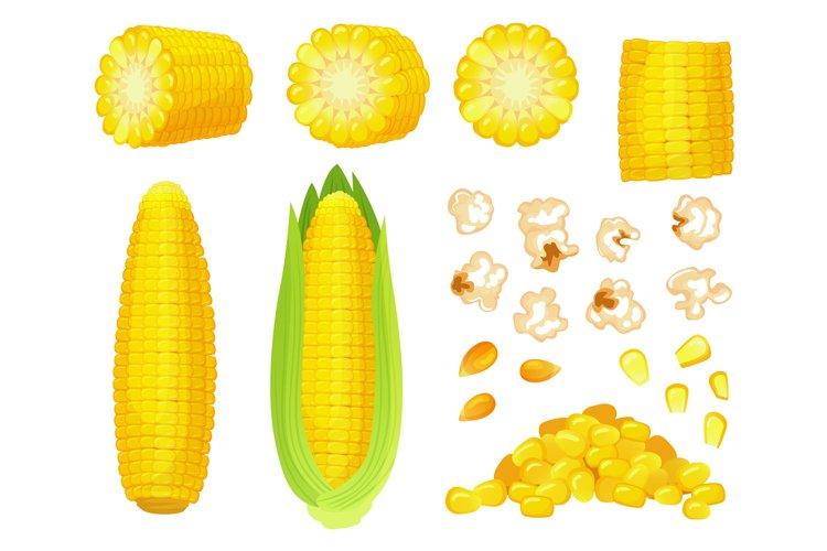 Cartoon corn. Golden maize harvest, popcorn corny grains and example image 1