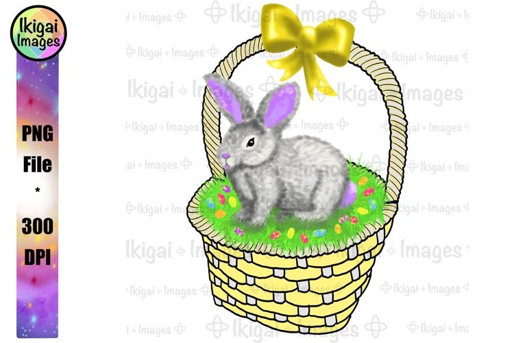 Easter Bunny Basket Sublimation PNG Hand Drawn Clipart Image example image 1