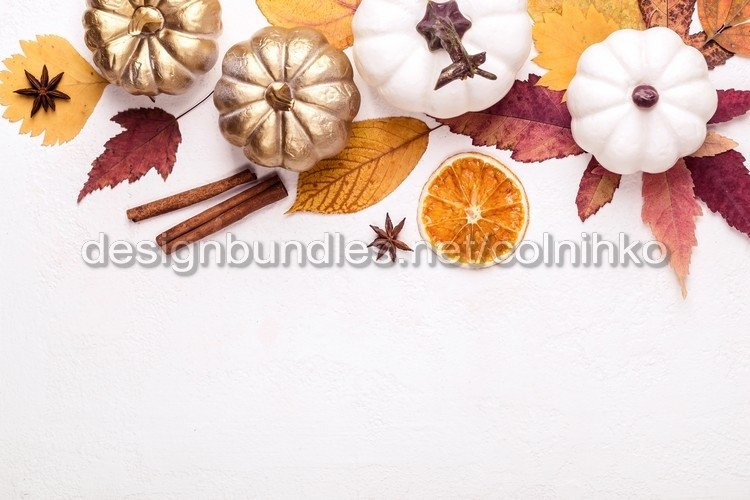 Multicolored leaves and white pumpkins example image 1