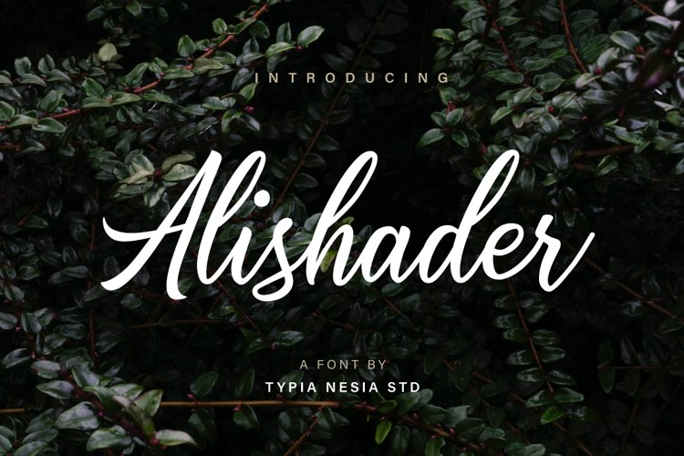 Alishader example image 1