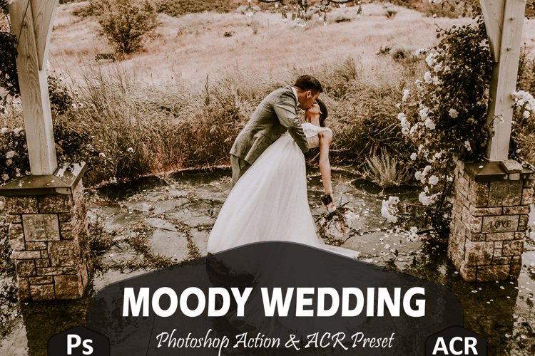 10 Moody Wedding Photoshop Actions And ACR Presets, fall Ps example image 1