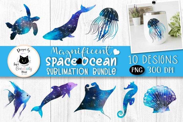 Ocean Animal Clipart   Beach and Summer Sublimation Bundle