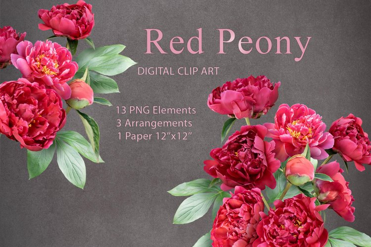 Red peony clipart. Floral arrangements.