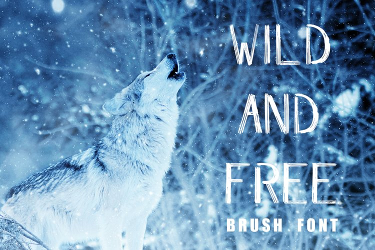 WILD & FREE Brush Font example image 1
