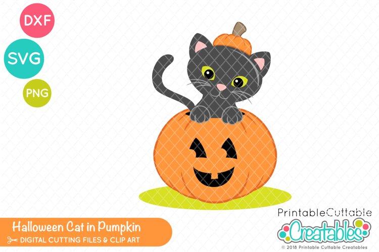 Halloween Cat in Pumpkin SVG example image 1