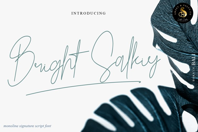 Bright Salkiy