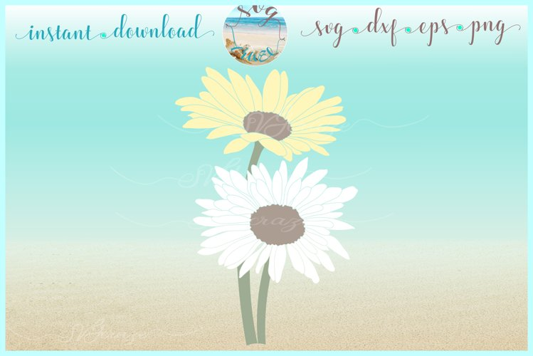 Daisy Flower SVG Dxf Eps PNG files for Cricut Silhouette