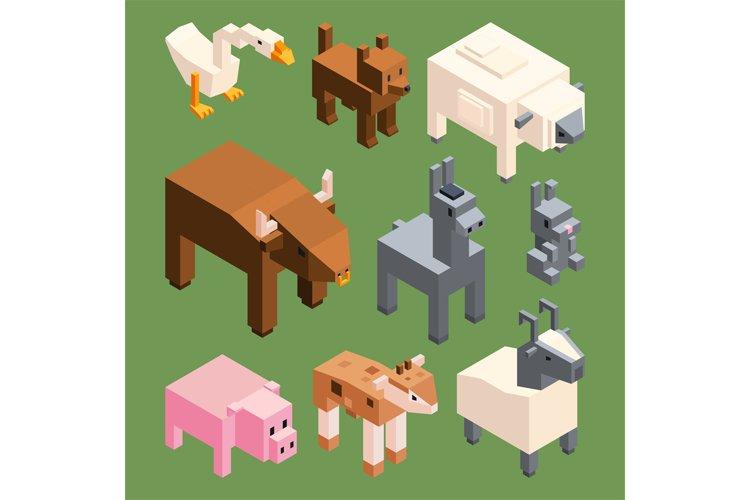 Isometric animals of farm. Vector stylized 3d animals isolat