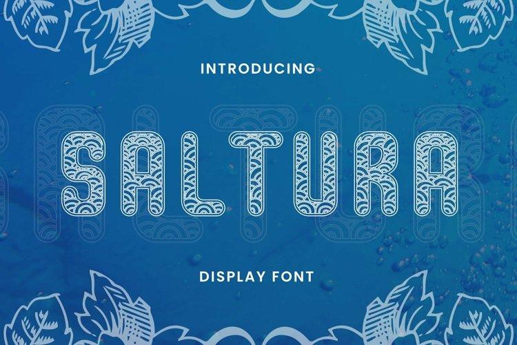 Web Font SALTURA Font