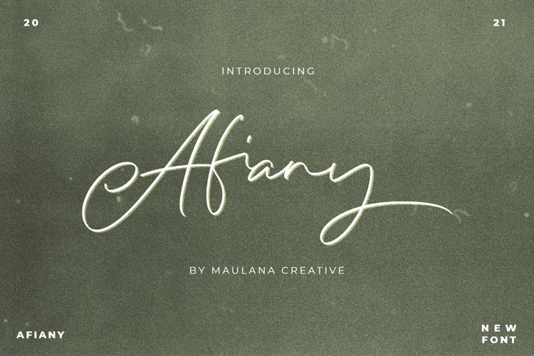 Afiany Brush Handwritten Script Font example image 1
