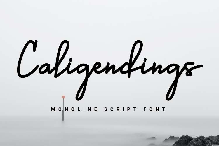Caligendings - Monoline Script Fonts example image 1
