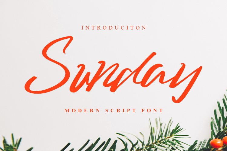 Sunday - Modern Script Font example image 1