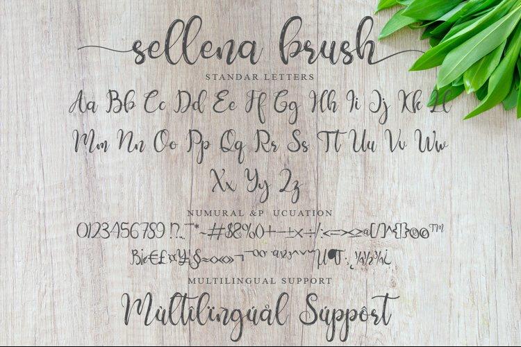 Sellena example 5