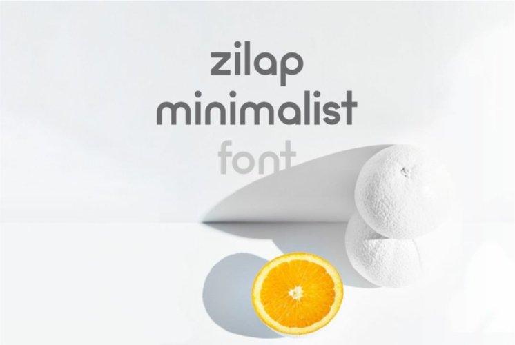Zilap Minimalist example image 1