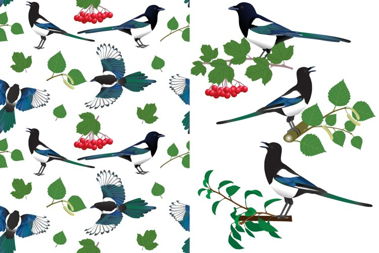 Magpie pattern example image 1