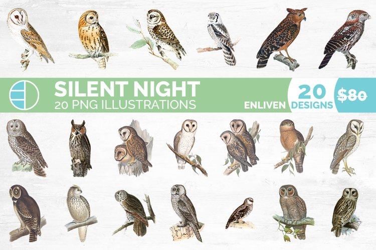 Owl Bundle Birds Vintage Clipart Set