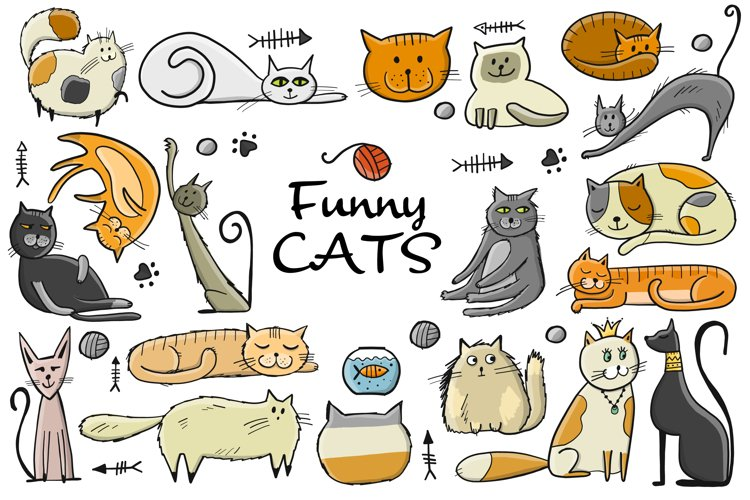 Funny characters of cats of different breeds