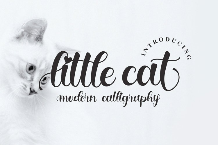 little cat example image 1