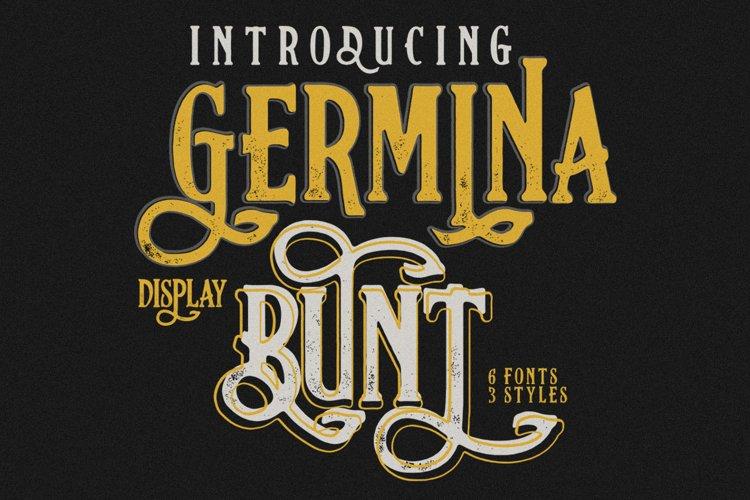Germinabunt Fonts