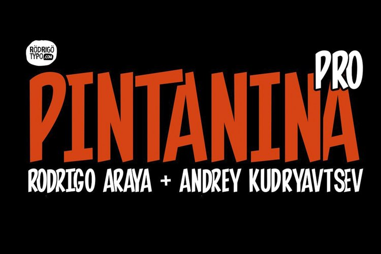 Pintanina Pro example image 1