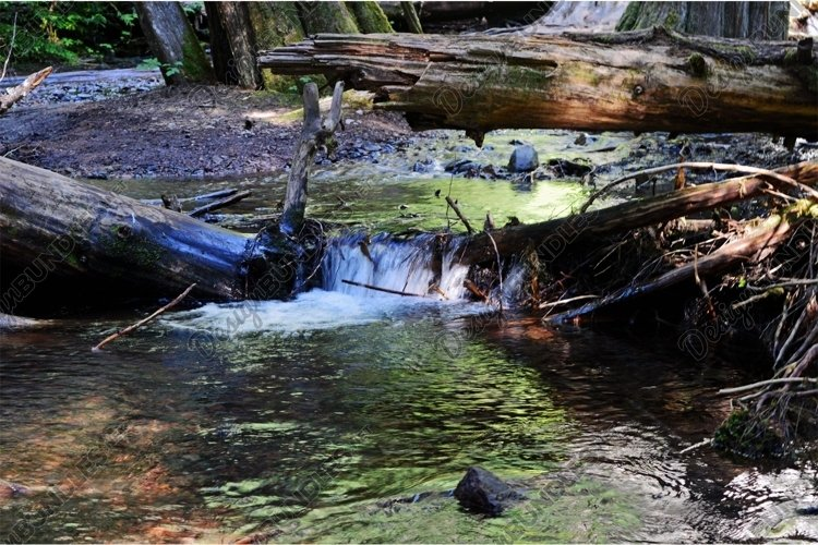 Stock Photo, Waterfall, Forest, River example image 1