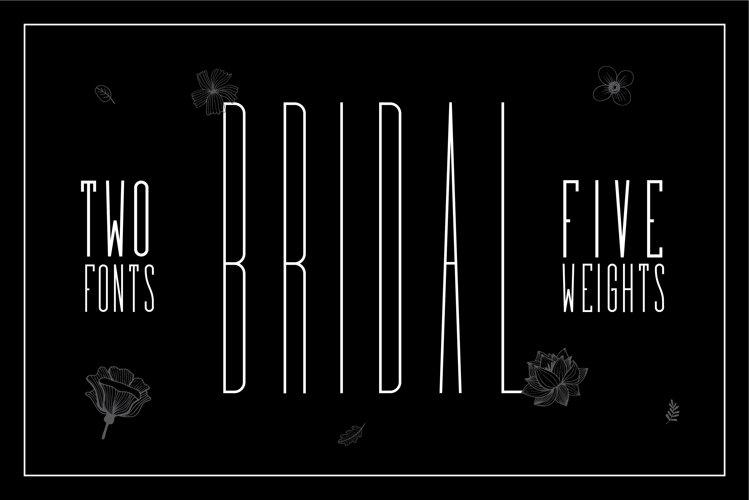 Bridal - Sans Serif Font Family example image 1