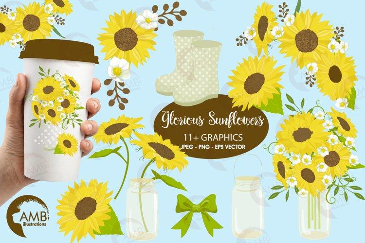Sunflower clipart, graphics, illustrations AMB-1416
