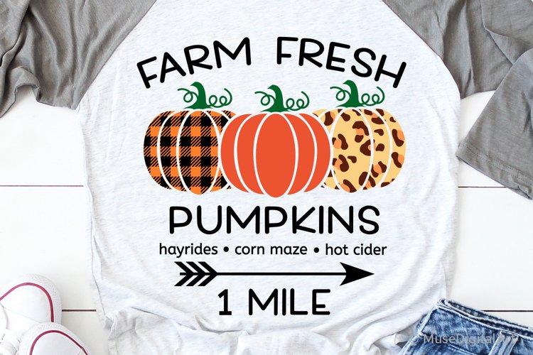 Farm Fresh Pumpkins Svg, Pumpkin Patch Svg, Fall Harvest Svg