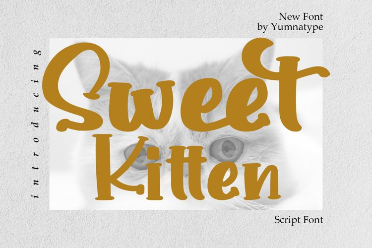 Sweet Kitten example image 1