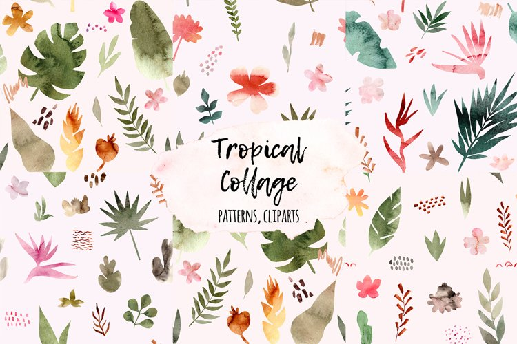 Tropical Collage. Patterns, Cliparts example image 1