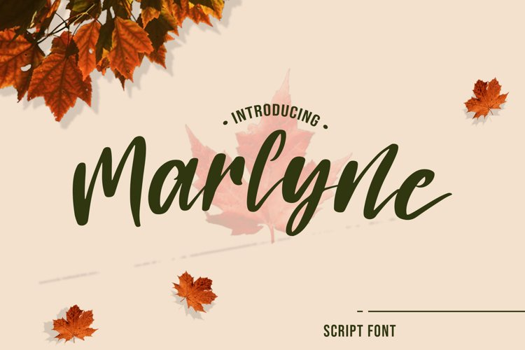 Marlyne Script Font example image 1