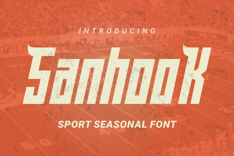 Sanhook Font example image 1