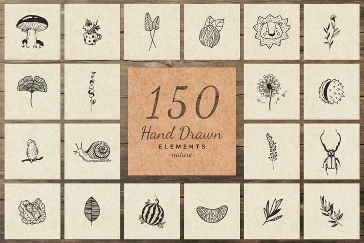 150 Hand Drawn Elements -Nature III- example image 1