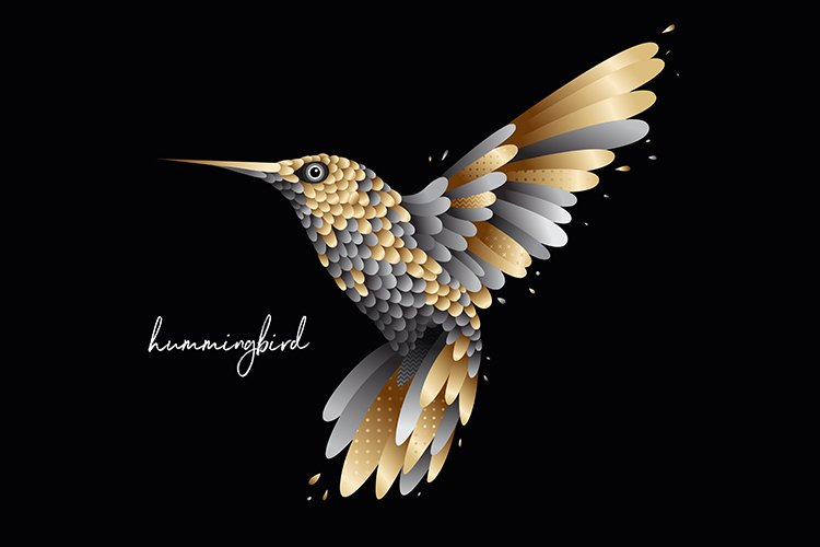 Royal humming bird illustration example image 1