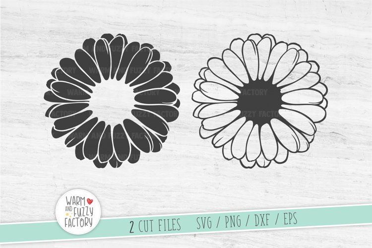 Daisy svg, Gerber daisy svg, Flower svg, Hand drawn daisy
