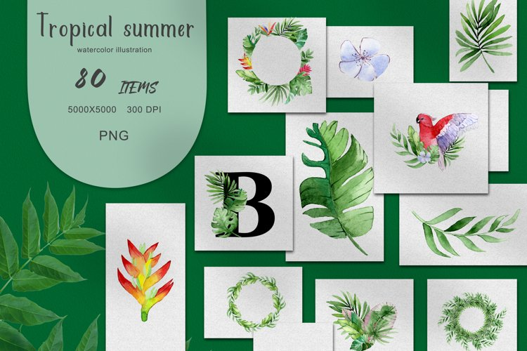 PNG Watercolor Tropical Summer Clipart Set example image 1
