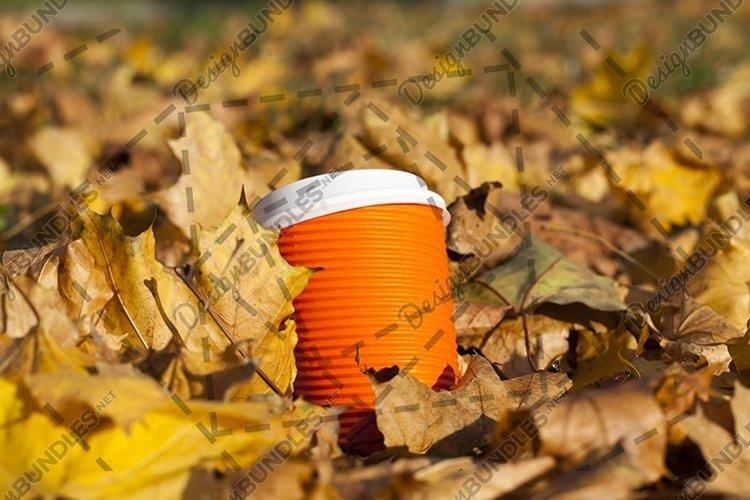 orange cups example image 1
