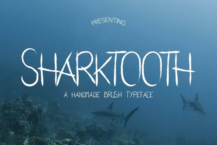 Web Font Sharktooth Typeface example image 1