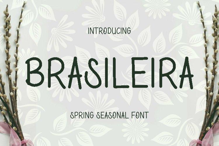 Web Font Brasileira Font example image 1
