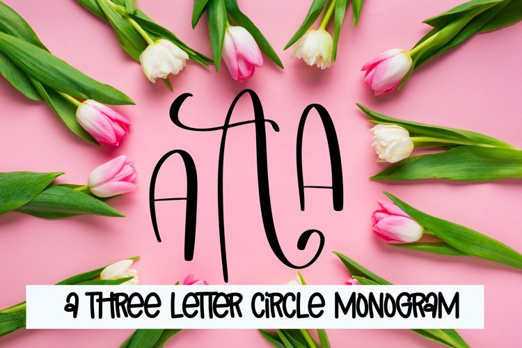 Three Letters - Monogram Font example image 1